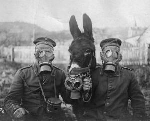 Godfrey&Donkey